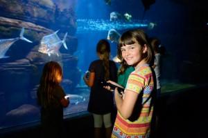 Taschenlampenführung im Aquarium Berlin | Foto: Zoo Berlin